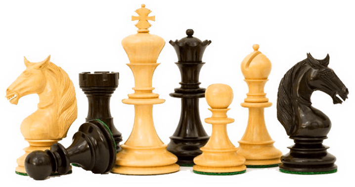 THE EUROPEAN CHESS CHAMPIONSHIP 2010